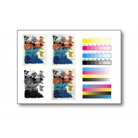 SPECIAL : TEST PRINT : Textured Card - A3+ size